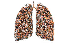images, lungs destroyed by smoking